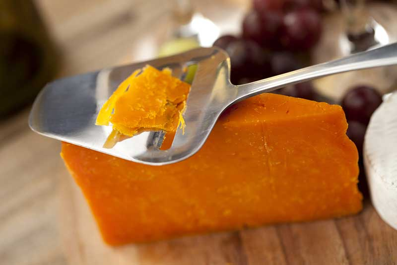 Best Cheese Slicer - Buyer's Guide